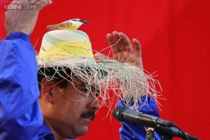 maduro-chavez-bird