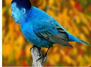 o-CHAVEZ-IS-A-BIRD-facebook
